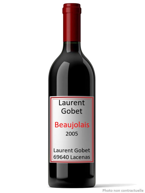 Laurent Gobet 2005